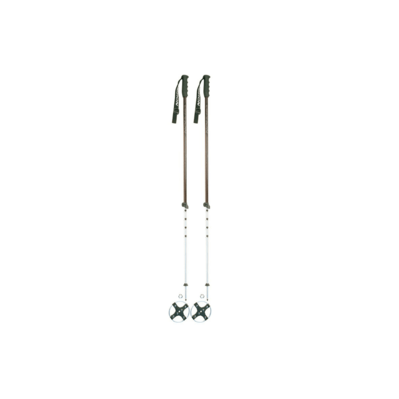 Ski Sticks 797 with leather disc